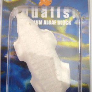 Aquarium Algae Block Clam Shell