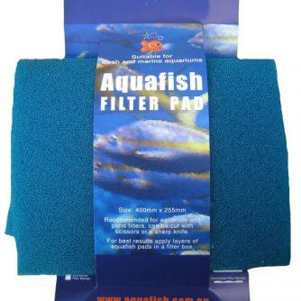 Filter-Sponge-on-Card